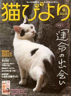 20130901_nekobiyori_71_01
